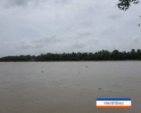 Land For Sale next to Bangpakong River