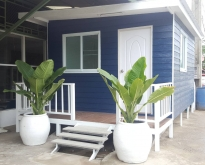 House for rent in the city of Nakhon Si Thammarat